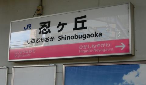 【もうすぐ駅名変更】 隣の駅が 「東寝屋川」 の駅名標&在線位置表示(忍ケ丘・星田・河内磐船)