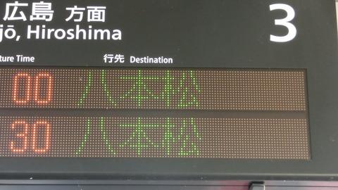 CIMG8175-1