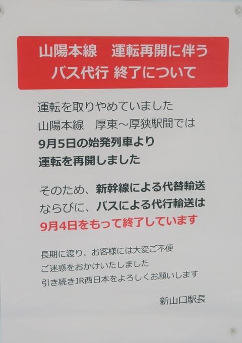 IMG_7799-1