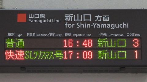 IMG_8031-1