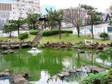 国父史蹟紀念館の庭