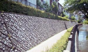 5 埼玉 砂堀川都市下水道整備 NR甲州 1995 (22)