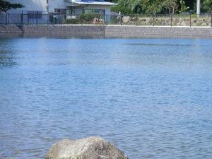 21丸池(清水町)1