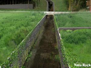 六郷河川植栽