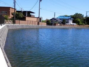 21丸池(清水町)10