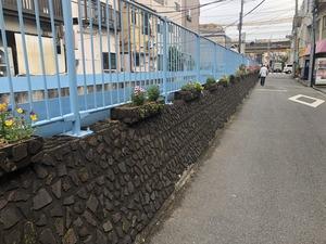 2019.5.14立会川 (6)
