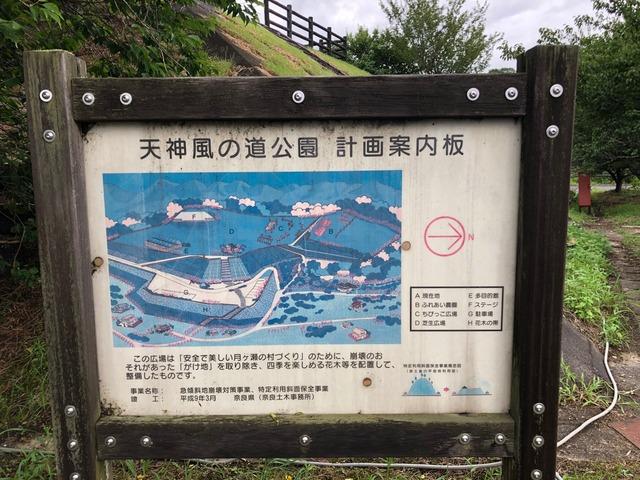 天神風の道公園_0998