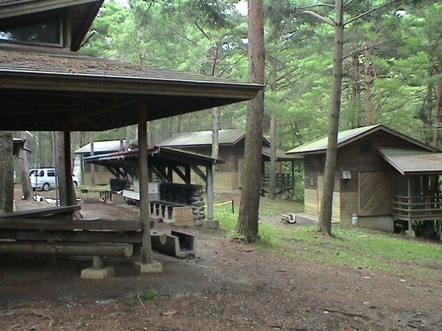 しだれ 栗 森林 公園 キャンプ 場