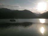 湖上のスワン
