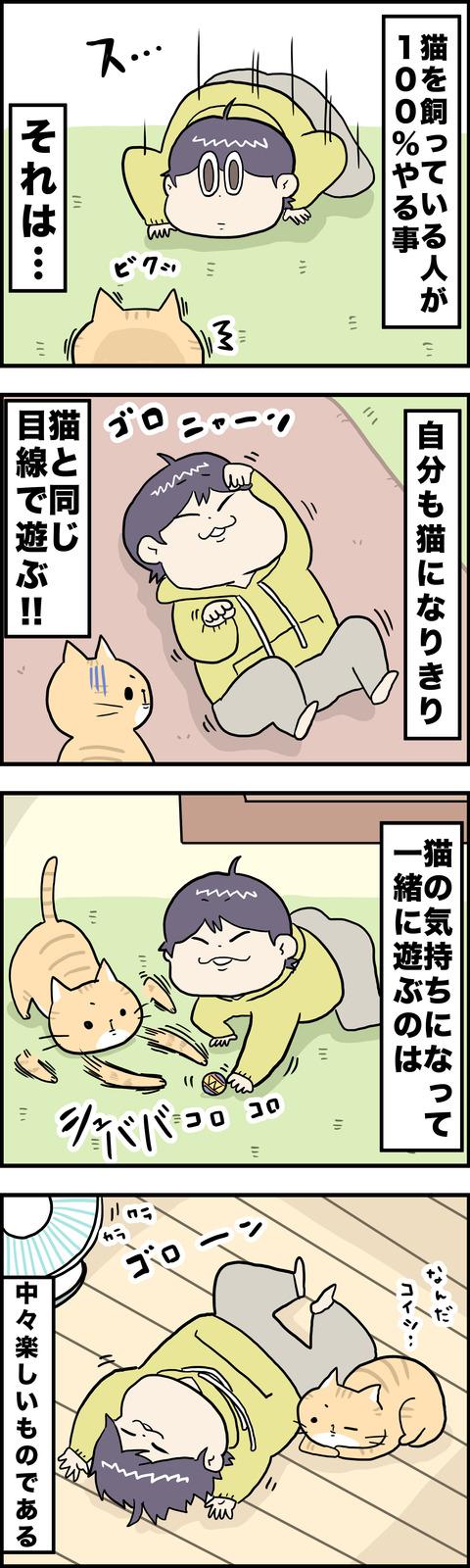 4コマ 猫なり