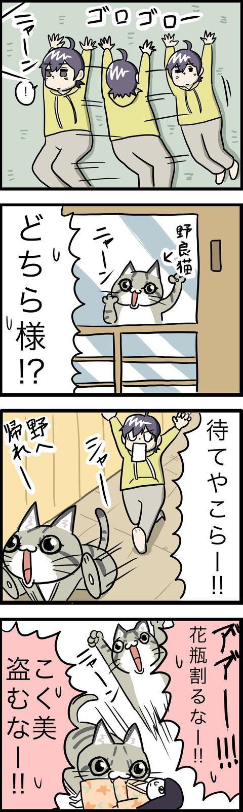 4コマ 猫猫パニック