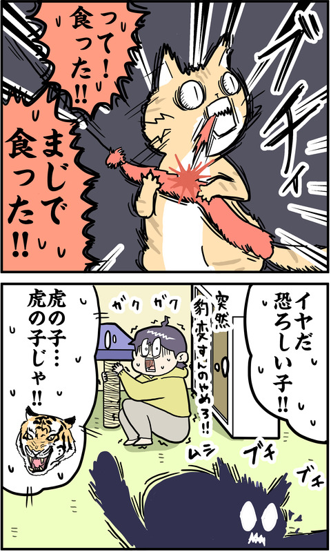 2コマ 虎 その2