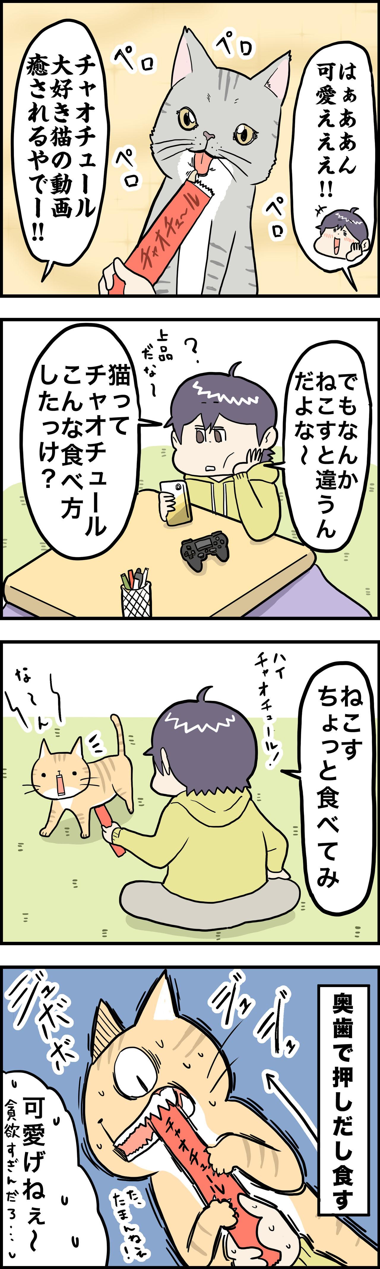 猫 チュール 動画
