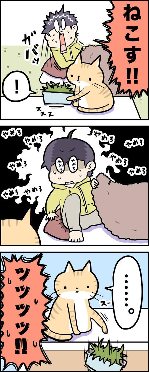 3コマ 猫草 その2