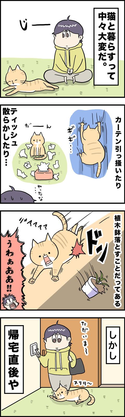 4コマ 猫飼い