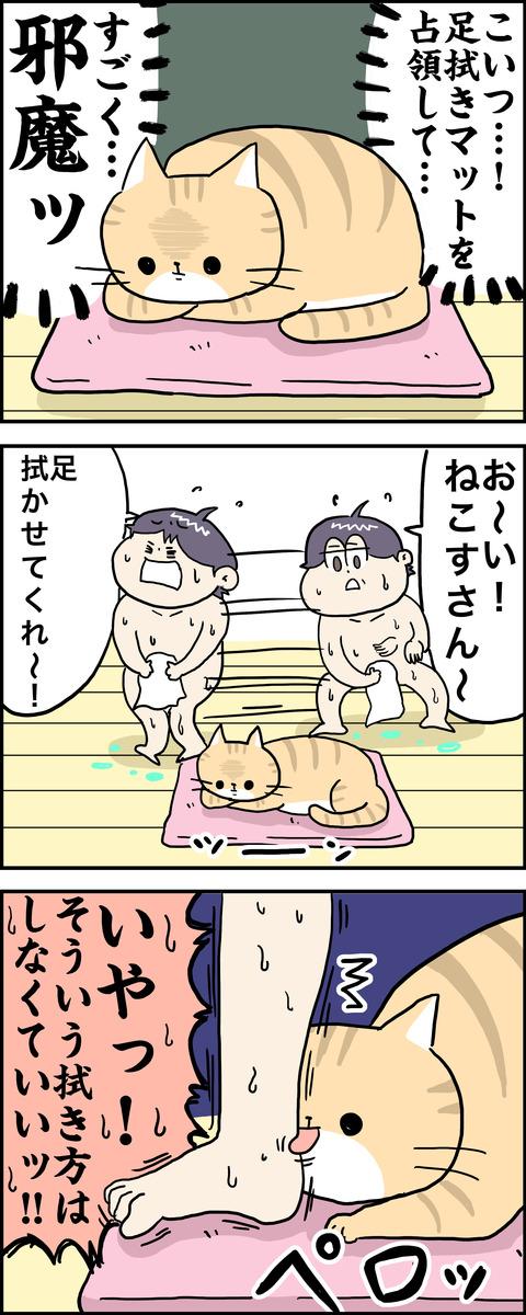 3コマ ねこ風呂 その2