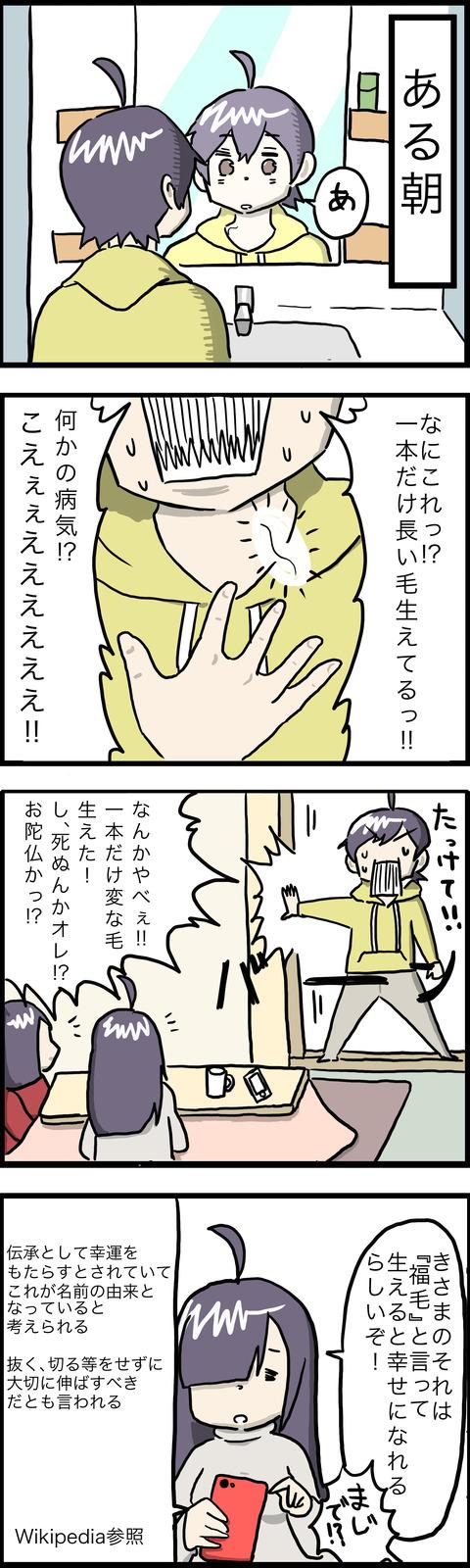 4コマ  福毛