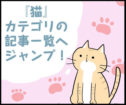 1コマ 猫カテゴリ