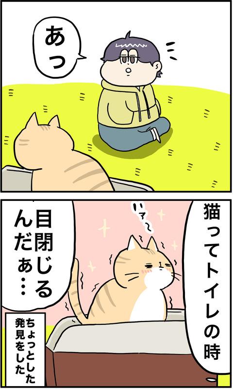 2コマ 猫トイレ その2