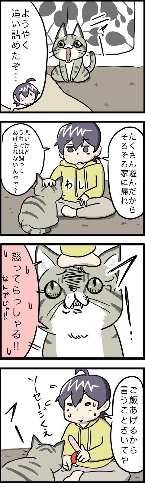 4コマ 猫猫パニックその2