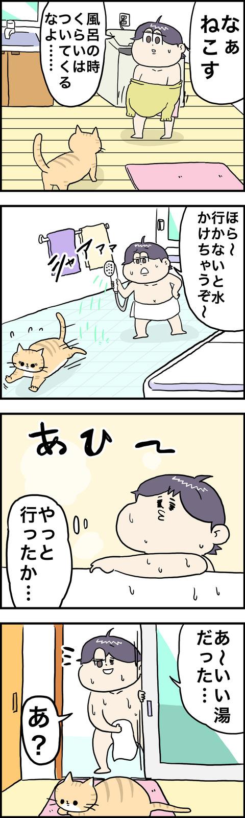 4コマ ねこ風呂