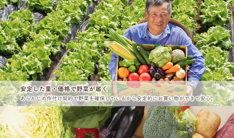 radishbo-ya-organic-meal-delivery