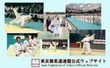 hyoshi3