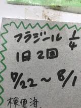 07273d51.jpg