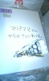 6e4ec5d4.jpg