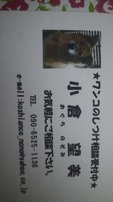 9ec73677.jpg