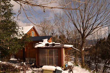 初雪2017-5