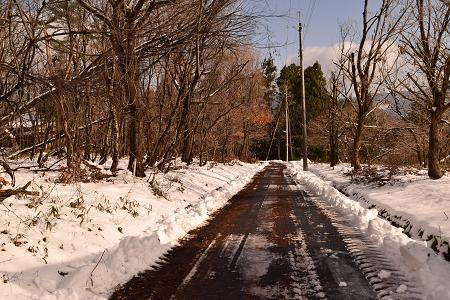 初雪2017-1