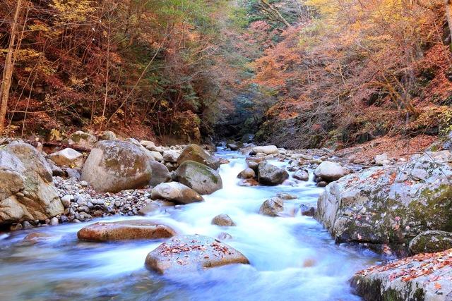20141126-西沢渓谷-6