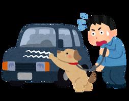 pet_inu_car_kizu