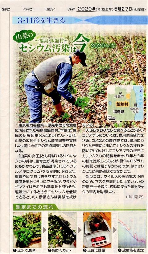 東京新聞20200527山菜汚染1