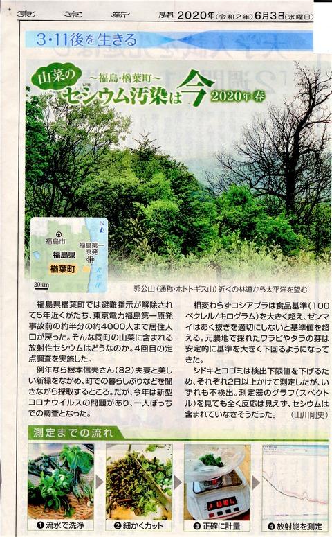 東京新聞20200603山菜汚染1
