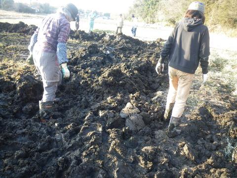 2021-02-13 16-10-04_0056埋め戻た泥を踏み均す