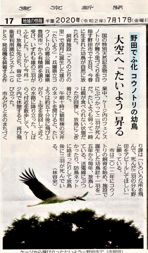 20200717東京新聞コウノトリ放鳥
