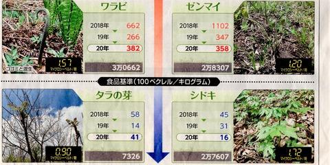 東京新聞20200527山菜汚染3