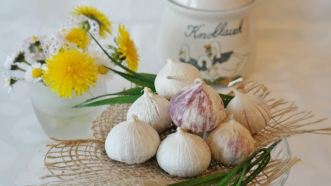 garlic-2254690_960_720
