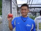 トマト収穫6