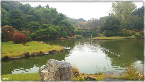小石川植物園