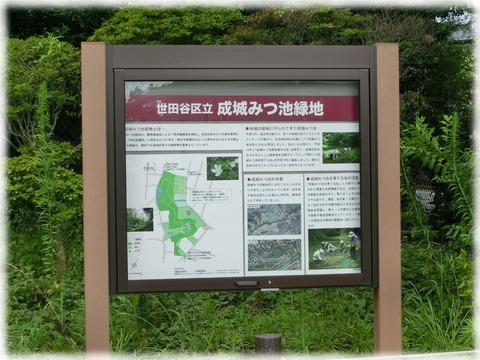 成城みつ池緑地