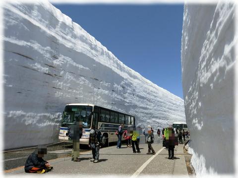 立山雪の大谷