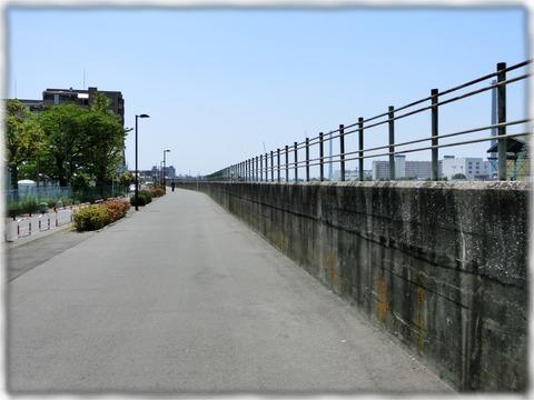 旧江戸川護岸