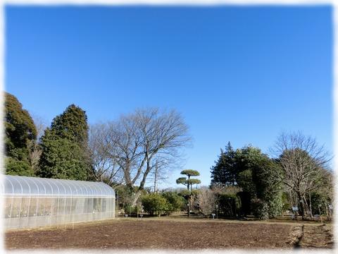 くらしの植物苑