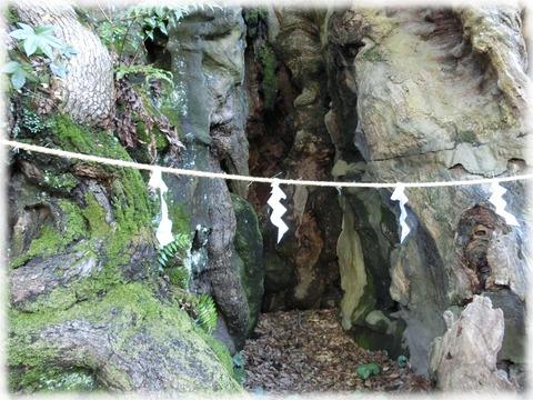 来宮神社14