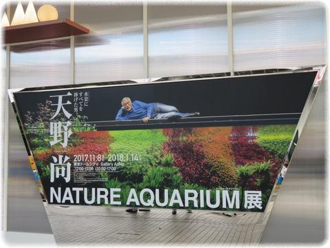 NATURE AQUARIUM展