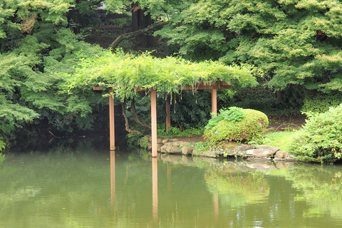 言の葉の庭_雨宿り場所