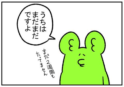 R1.11.30 にゃんこ大戦争 3